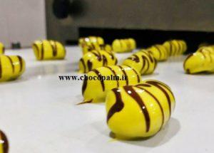 خرما شکلاتی بوشهر